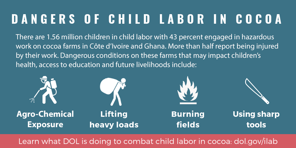 Dangers of child labor in cocoa infographic