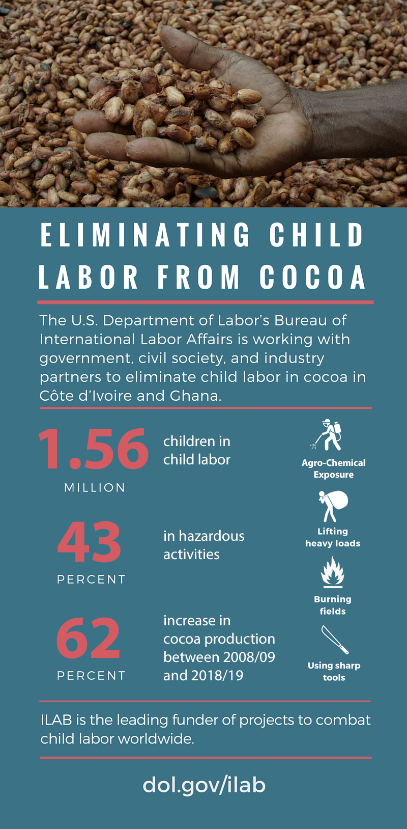 Eliminating Child Labor from Cocoa Infographic