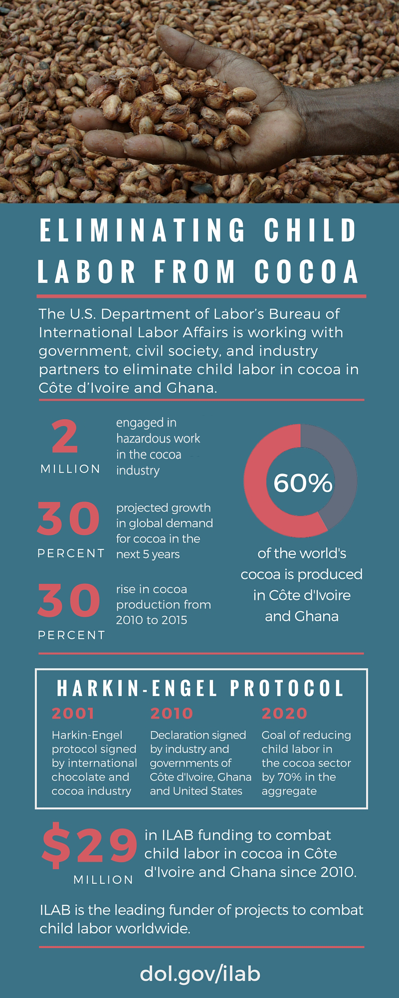 Child labor in cocoa infographic