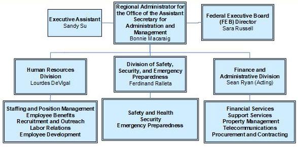 Org chart - information below