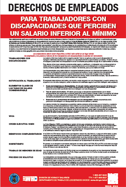 Special Minimum Wage Poster in Spanish